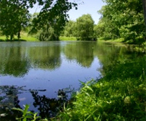 Iowa pond construction inc building repair consulting for Building a 1 acre pond